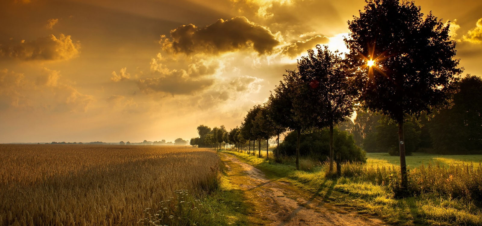 733226-amazing-nature-wallpaper_0000_countryside-sunset-4170